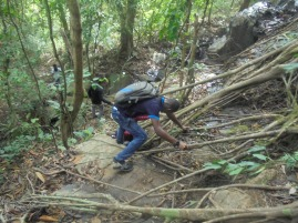 2017 1 2 Nyamkomasu Falls