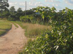 2017 5 29 Road in Effiduase